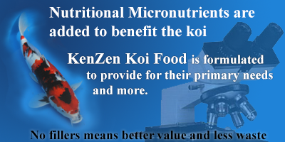Kenzen koi food